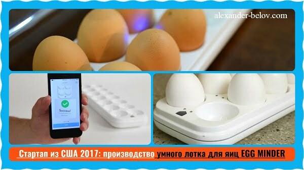 -Стартап из США 2017 производство умного лотка для яиц EGG MINDER