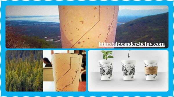 Биоразлагаемые кофейные стаканчики с семенами